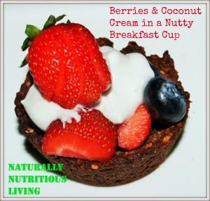 berries&cream breakfast cup